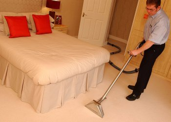 chemdry man - cleaning carpet